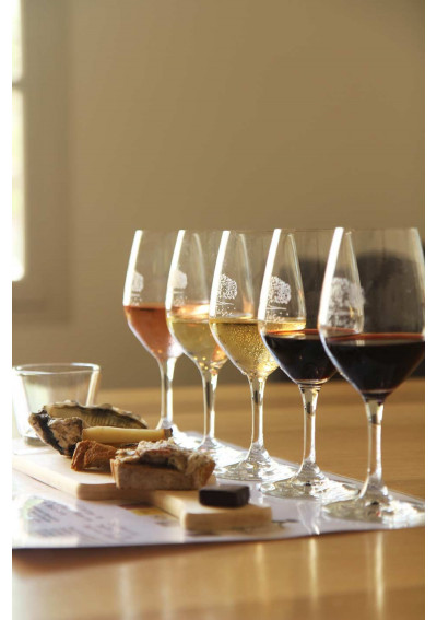 Wine tour gourmand